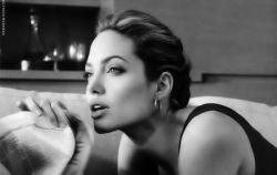 Angelina Jolie для St.John (фото)