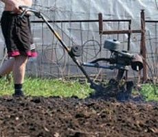 Фермер выкопал в огороде драгоценности древних цивилизаций