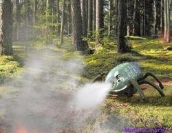 Роботы-мокрицы будут спасать леса от пожаров