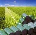 В Германии из-за биотоплива подорожают пиво и шоколад
