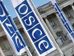 Генсек ОБСЕ не видит прогресса в принятии ДОВСЕ
