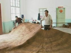 В Китае соткали огромный кокосовый дождевик