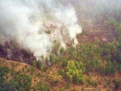 Пламя от пожаров проявило бездействие чиновников Братска