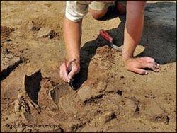 """""""Северный поток""""   рай для археологов"""