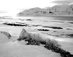 США продадут Арктику по частям