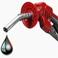Переход на биотопливо может привести к экологической катастрофе