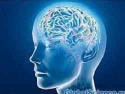 Мозговые киберимпланты II