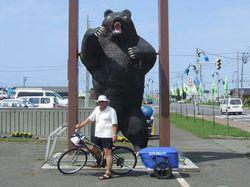 В Петропавловске грибник спасся от медведя на велосипеде