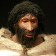 Учёные нашли причину различия формы лица людей и неандертальцев