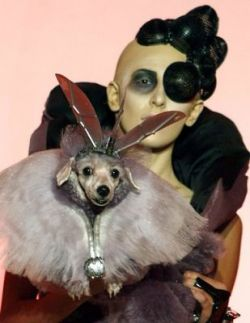 Pet Fashion Week — Неделя Моды для Животных (фото)