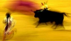 Испания отменила бой быков