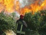 Туристов эвакуируют с Сицилии из-за сильных пожаров