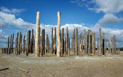 Село у деревянного Стоунхенджа открыло связь живых и мертвецов