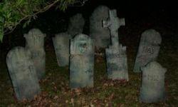Нетрезвая немка разгромила кладбище на автомобиле