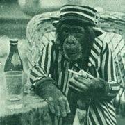 Шимпанзе умеют сопротивляться соблазнам