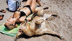 Пляжные законы далеких стран могут изрядно подпортить настроение отдыхающим