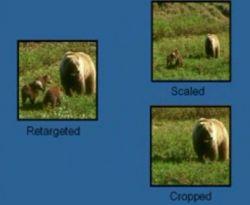 Уникальная технология позволяет изменять размеры фото, не деформируя основные объекты (видео)