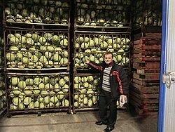 Нанодом для урожая открыт под Петербургом