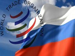 Вступление России в ВТО эксперимент на живом организме