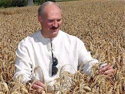 Лукашенко о продовольственной безопасности Беларуси