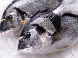Новая система выявления пестицидов в рыбе