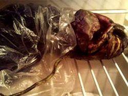 Бабушка прятала инопланетянина в холодильнике