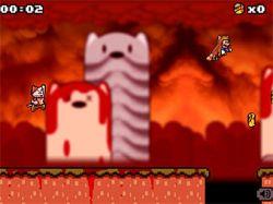 PETA обвинила сантехника Марио в жестоком обращении с енотом