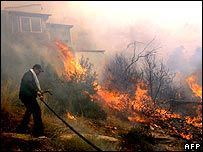 Греция просит помощи у ЕС из-за сильнейших пожаров