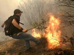 Житель Афин заснял поджигателей на камеру мобильного телефона