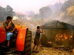За информацию о греческих поджигателях заплатят миллион евро