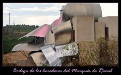 Винный отель «Bodega Marques de Riscal» (фото)