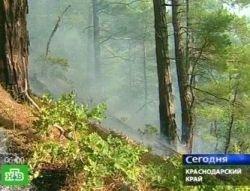 Заповедники Геленджика охвачены огнем