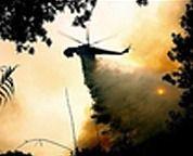 В Греции задержаны 32 подозреваемых в поджогах, оппозиция начала антиправительственные митинги