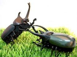 Бои электронных жуков aka Beetle Battle Robot