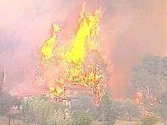 Борьба с лесными пожарами в Греции приобретает черты военной операции