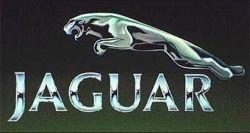 """Надписи \""""Jaguar\"""" на автомобилях больше не будет"""