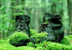 Где работать военным пенсионерам