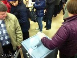 Нарушения на выборах в Петербурге прошли без наказания