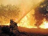 В туристических регионах Турции горят леса