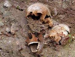 В Венеции строители случайно нашли чумное кладбище (фото)