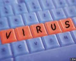 Компьютерные вирусы помогут борьбе с терроризмом