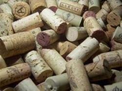 Плохая погода спровоцировала дефицит итальянского вина