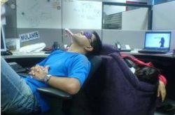 Секрет успеха: 49% мужчин спят на рабочем месте