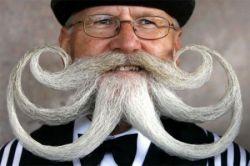Самые забавные претенденты на звание лучшего бородача (фото)