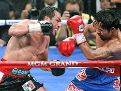 В Мексике отменили итоги выборов из-за агитации на трусах боксера