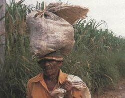 В Африке продолжают торговать детьми