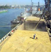 Правительство может ввести заградительные пошлины на экспорт зерна ради борьбы с инфляцией