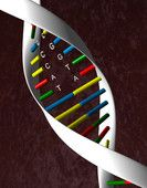 Генетические различия между людьми гораздо существеннее, чем предполагалось
