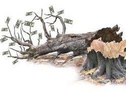 Где больше всего коррупционеров?