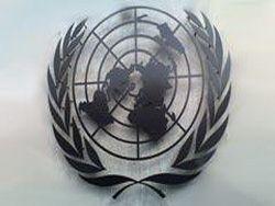 Эксперты ООН не разделили оптимизма Путина